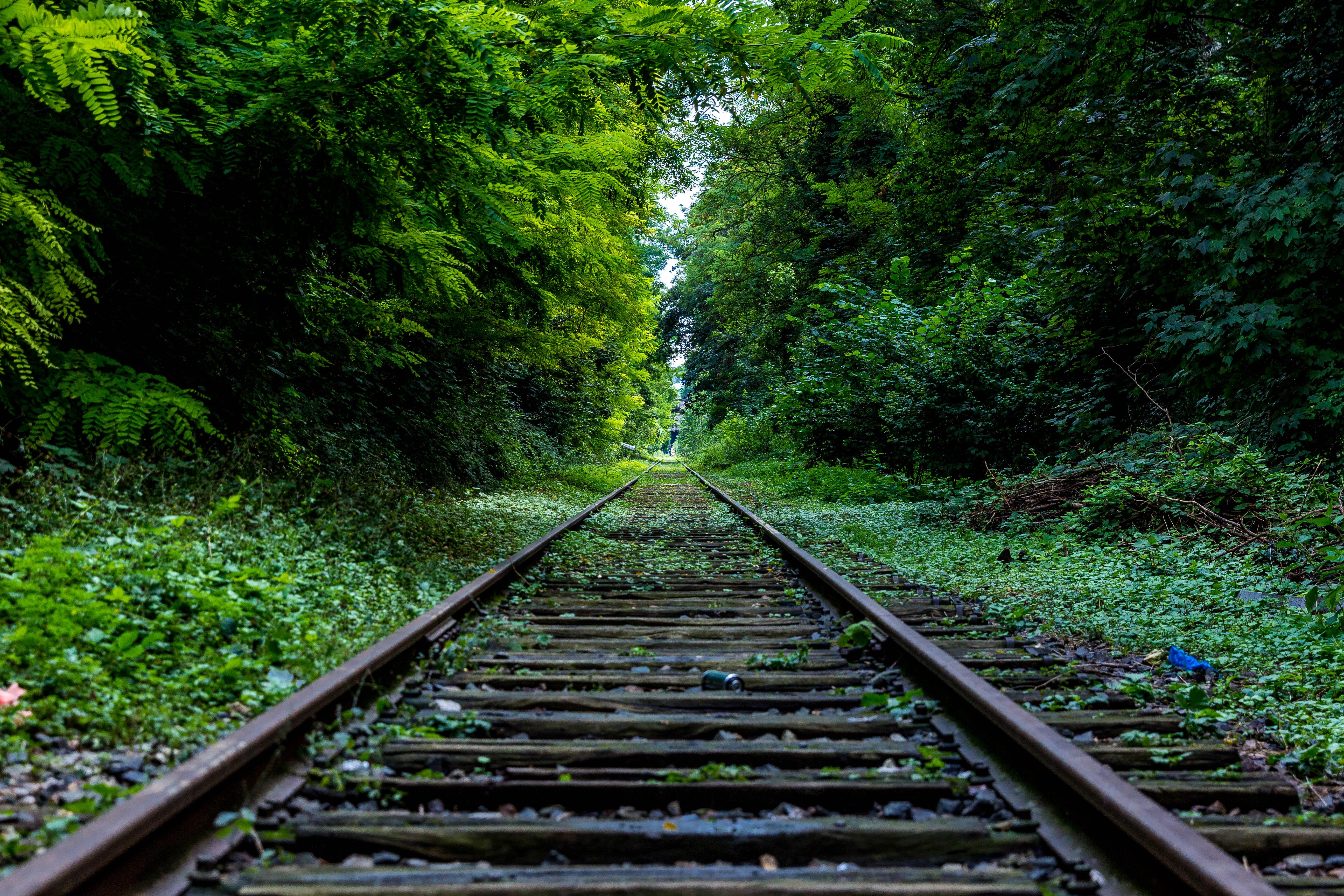 via-del-tren-verde